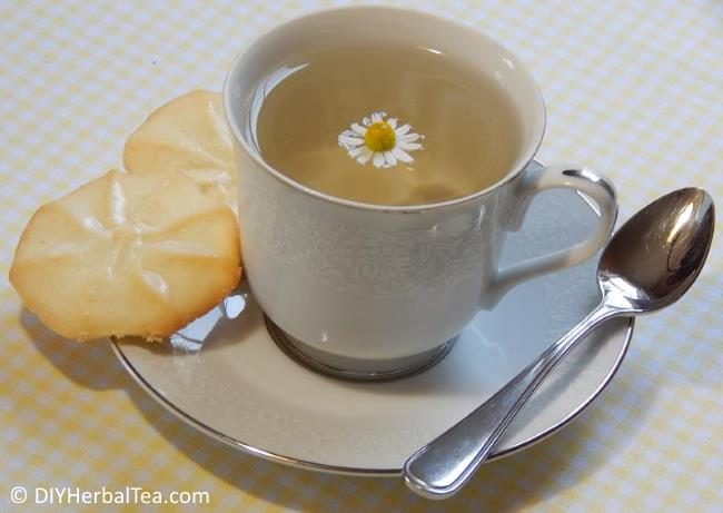 Cup of chamomile tea with cookies