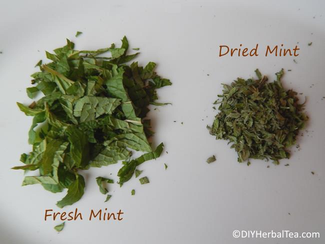 Mint Tea From Fresh Or Dried Leaves