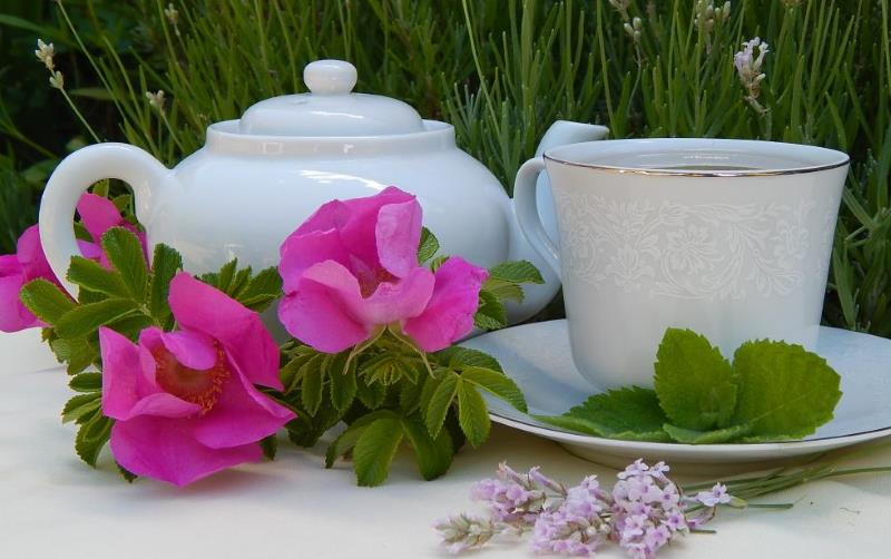Herbal tea in the garden
